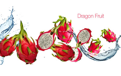 BCL Pitaya Dragon Fruit
